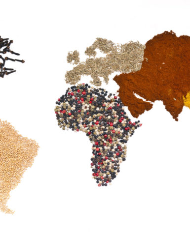 World map made from spices